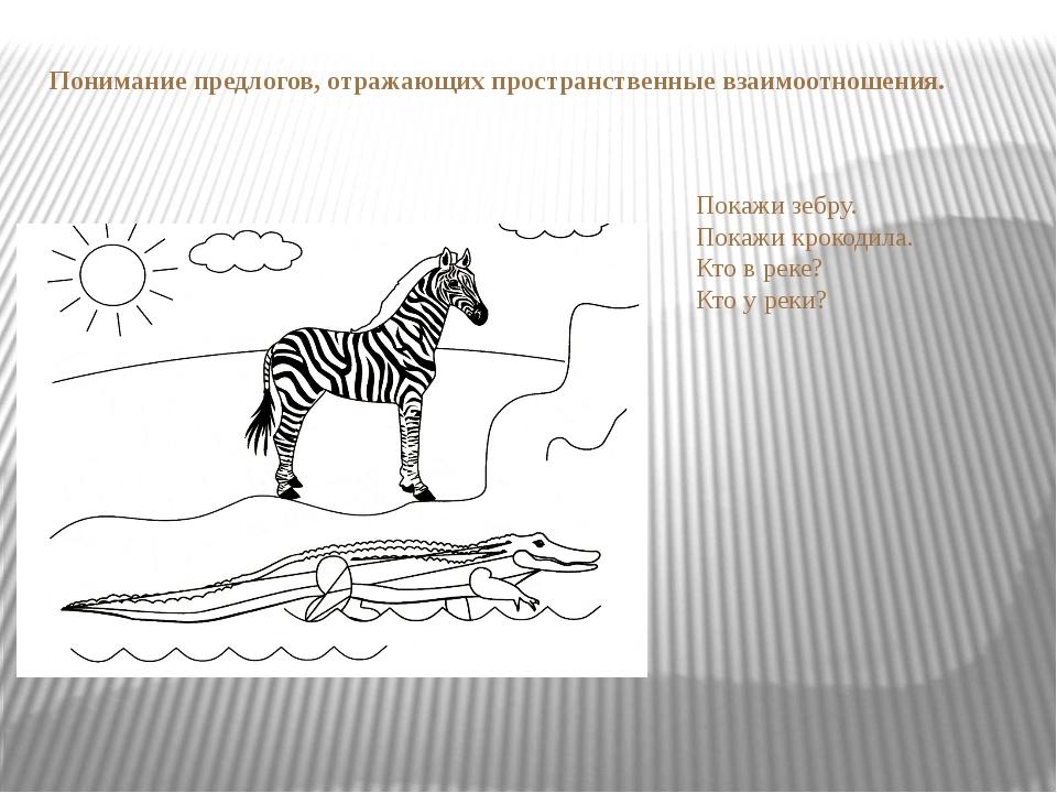 Понимание предлогов, отражающих пространственные взаимоотношения. Покажи зебр...