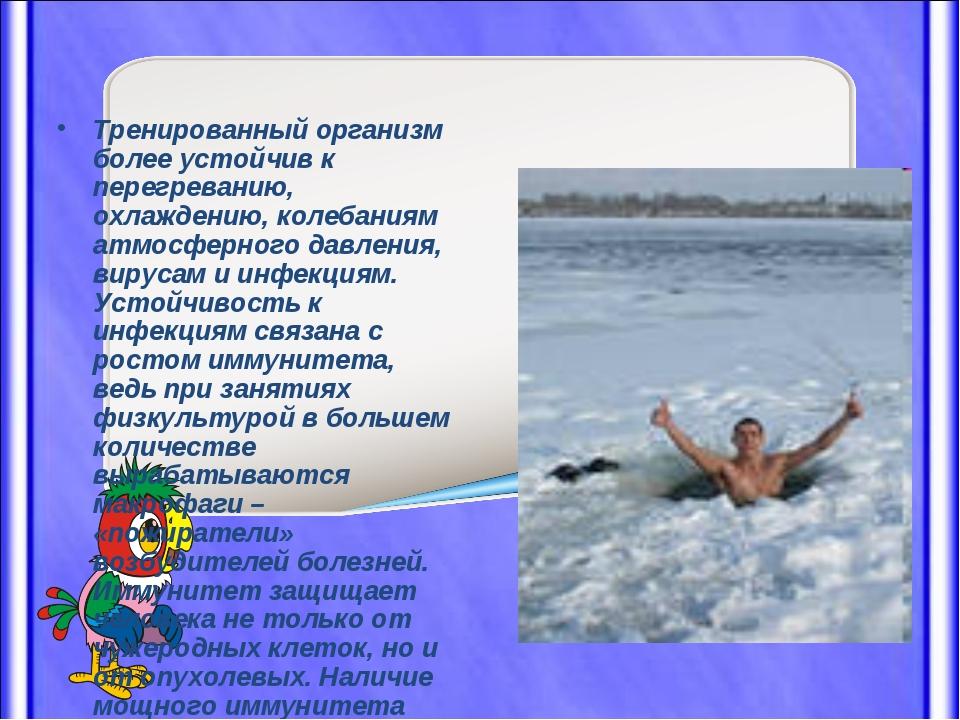 Тренированный организм более устойчив к перегреванию, охлаждению, колебаниям...