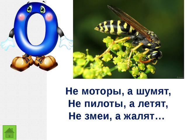 Не моторы, а шумят, Не пилоты, а летят, Не змеи, а жалят…