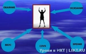 Виды информации по форме восприятия