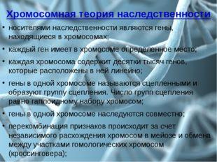 Хромосомная теория наследственности носителями наследственности являются гены