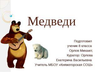 Медведи Подготовил ученик 8 класса Орлов Михаил; Куратор: Орлова Екатерина Ва