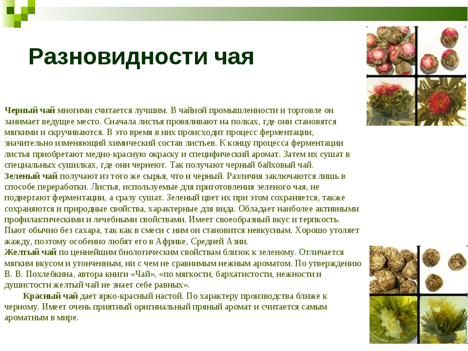 Разновидности чая Черный чай многими считается лучшим. В чайной промышленност...