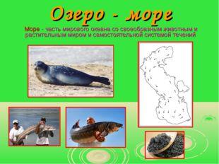 Озеро - море Море - часть мирового океана со своеобразным животным и растител