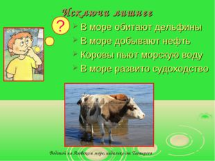 Исключи лишнее В море обитают дельфины В море добывают нефть Коровы пьют морс
