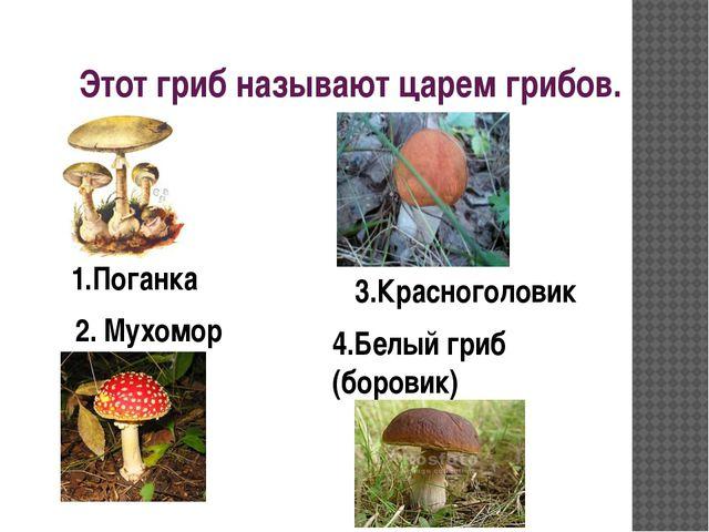 Этот гриб называют царем грибов. 4.Белый гриб (боровик) 1.Поганка 2. Мухомор...