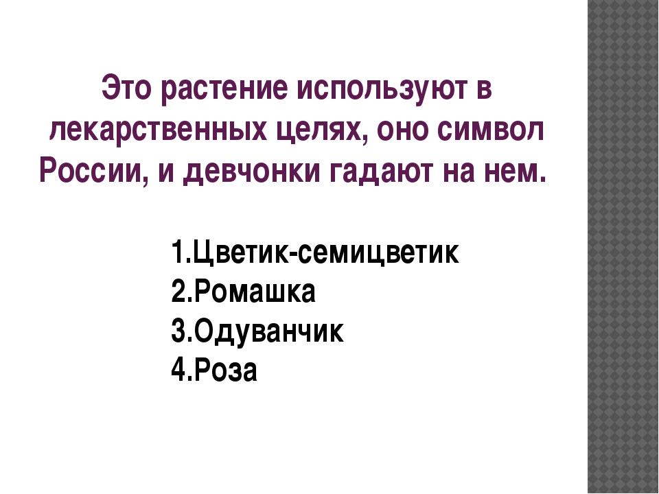 Это растение используют в лекарственных целях, оно символ России, и девчонки...