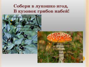 Собери в лукошко ягод, В кузовок грибов набей!