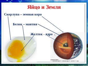 Яйцо и Земля Скорлупа – земная кора  Белок – мантия  Желток -