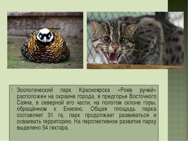 Зоологический парк Красноярска «Роев ручей» расположен на окраине города, в п...
