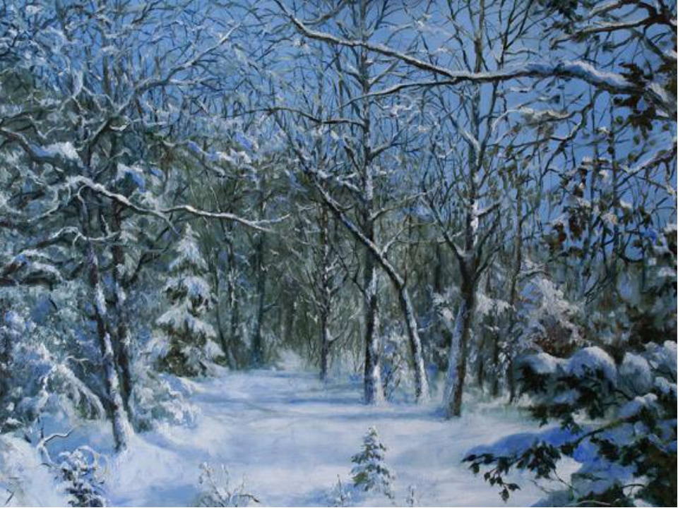 Картинки леса зимой для детей, открытка добрым