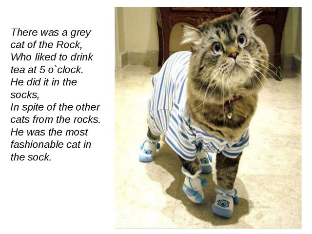 There was a grey cat of the Rock, Who liked to drink tea at 5 o`clock. He did...