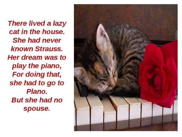There lived a lazy cat in the house. She had never known Strauss. Her dream w...