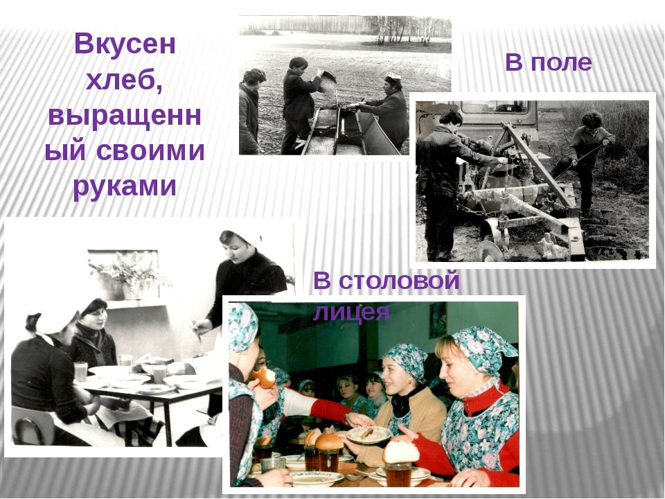 Вкусен хлеб, выращенный своими руками В столовой лицея В поле