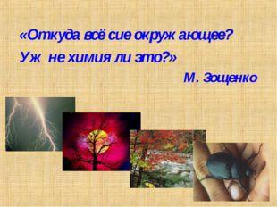 «Откуда всё сие окружающее? Уж не химия ли это?» М. Зощенко