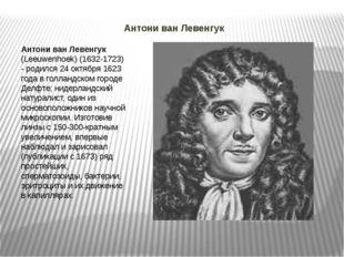 Антони ван Левенгук Антони ван Левенгук (Leeuwenhoek) (1632-1723) - родился2