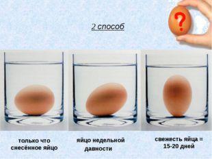 яйцо недельной давности свежесть яйца = 15-20 дней только что снесённое яйцо