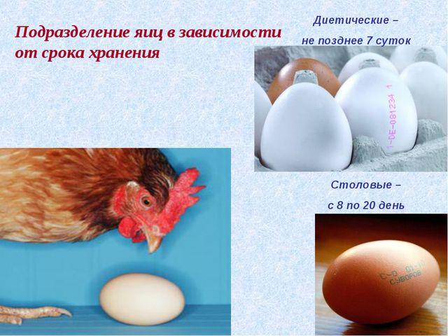 Столовые – с 8 по 20 день Диетические – не позднее 7 суток Подразделение яиц...