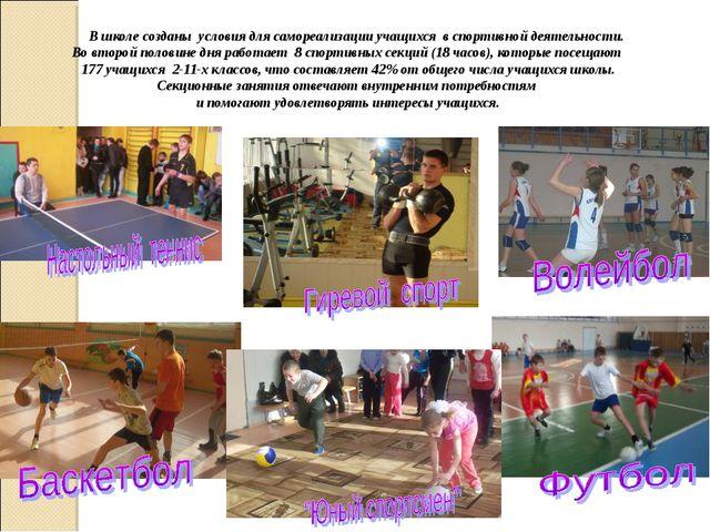 В школе созданы условия для самореализации учащихся в спортивной деятельност...
