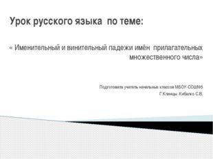 Урок русского языка по теме: « Именительный и винительный падежи имён прилага