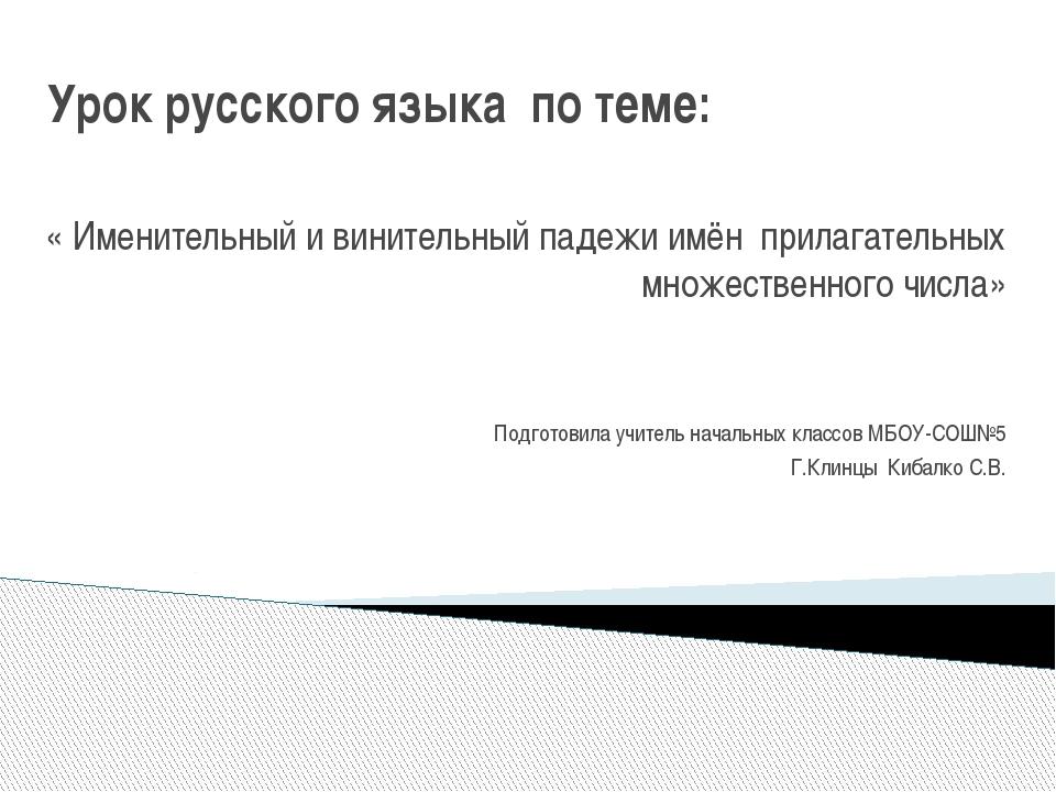 Урок русского языка по теме: « Именительный и винительный падежи имён прилага...