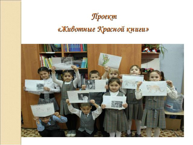 Проект «Животные Красной книги»
