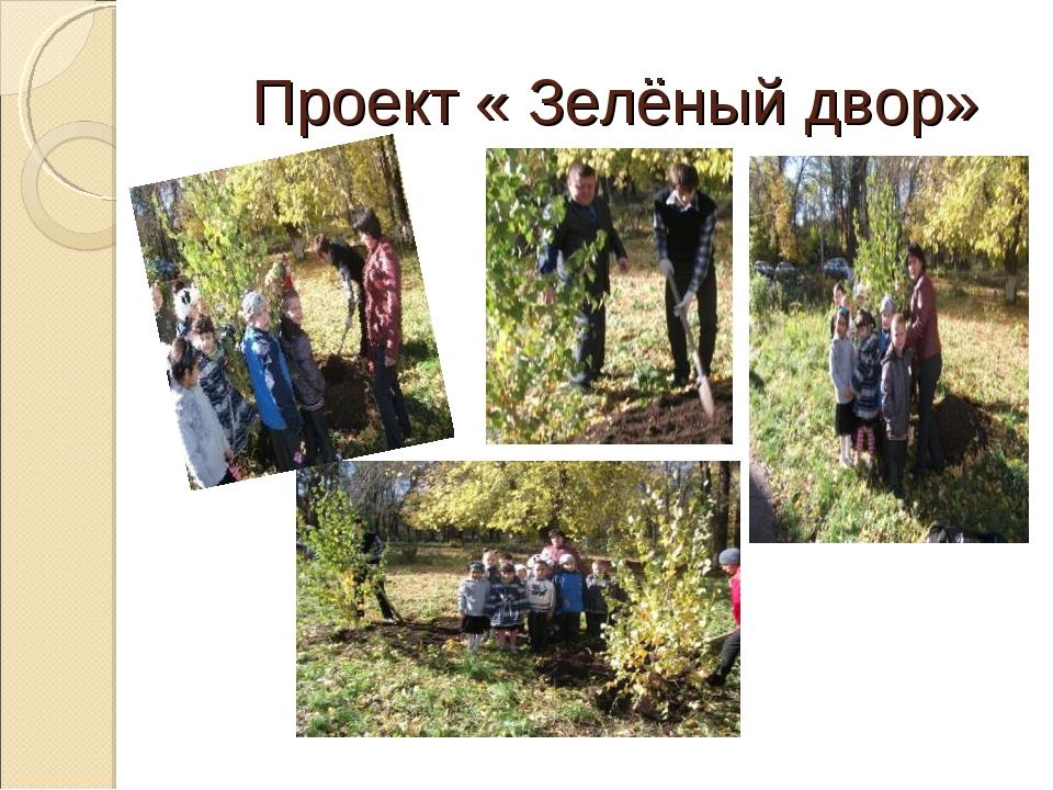 Проект « Зелёный двор»