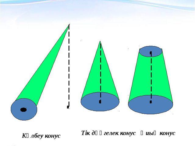 Конустың түрлері Көлбеу конус Тік дөңгелек конус Қиық конус