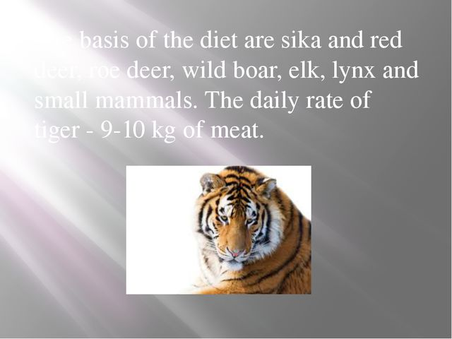 The basis of the diet are sika and red deer, roe deer, wild boar, elk, lynx a...