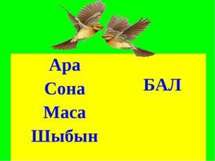 Ара БАЛ Сона Маса Шыбын