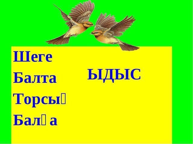 Шеге ЫДЫС Балта Торсық Балға