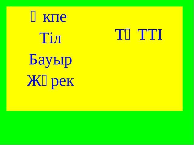 Өкпе  ТӘТТІ Тіл Бауыр Жүрек