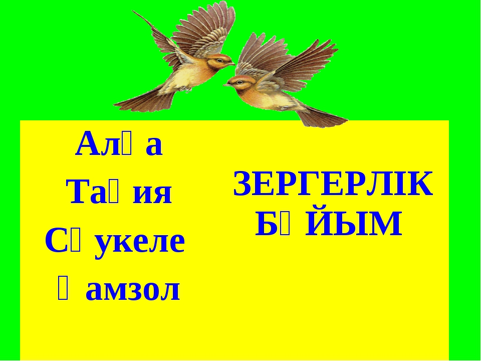 Алқа ЗЕРГЕРЛІК БҰЙЫМ Тақия Сәукеле  Қамзол