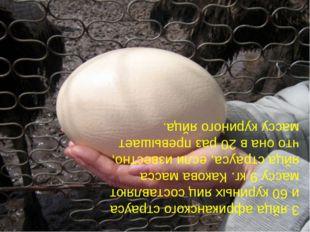 3 яйца африканского страуса и 60 куриных яиц составляют массу 9 кг. Какова ма