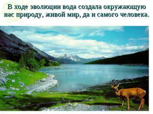 В ходе эволюции вода создала окружающую нас природу, живой мир, да и самого ч