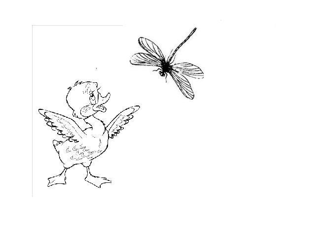C:\Documents and Settings\Admin.MICROSOF-23A843\Мои документы\Мои рисунки\Безымянный.JPG