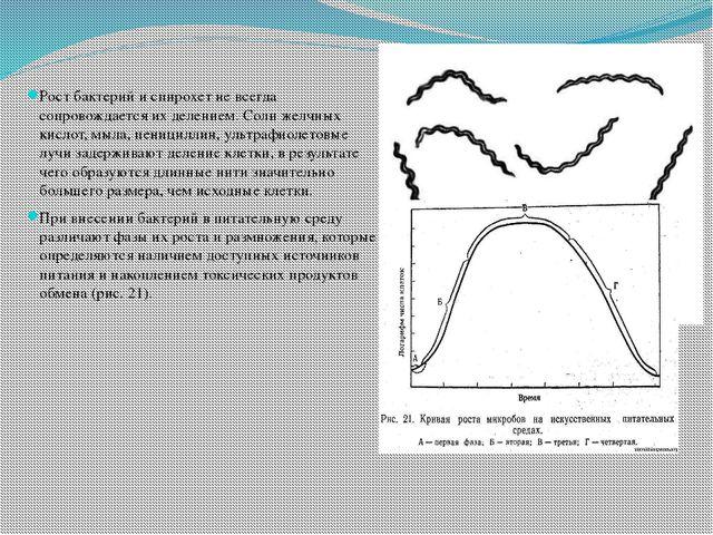 Рост бактерий и спирохет не всегда сопровождается их делением. Соли желчных...