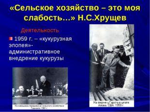 «Сельское хозяйство – это моя слабость…» Н.С.Хрущев Деятельность 1959 г. – «к