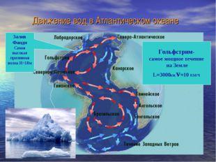 Движение вод в Атлантическом океане Гольфстрим- самое мощное течение на Земле