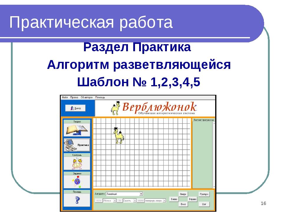 Практическая работа Раздел Практика Алгоритм разветвляющейся Шаблон № 1,2,3,4...