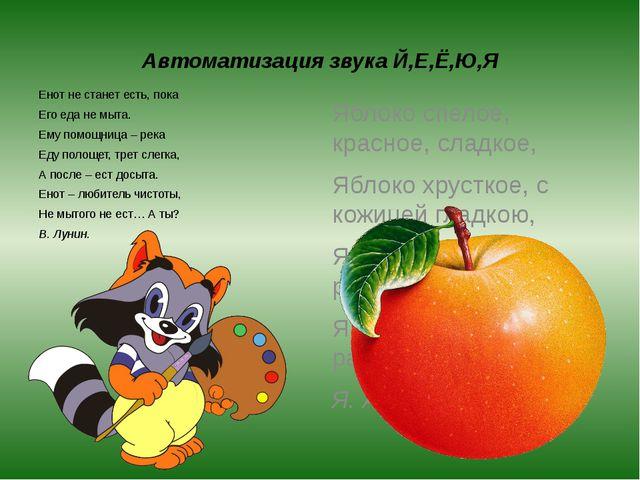 Автоматизация звука Й,Е,Ё,Ю,Я Енот не станет есть, пока Его еда не мыта. Ему...