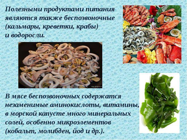 Полезными продуктами питания являются также беспозвоночные (кальмары, креветк...