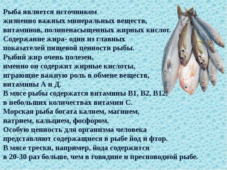 Рыба является источником жизненно важных минеральных веществ, витаминов, поли...