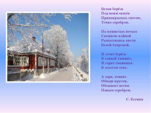 Белая берёза Под моим окном Принакрылась снегом, Точно серебром. На пушистых