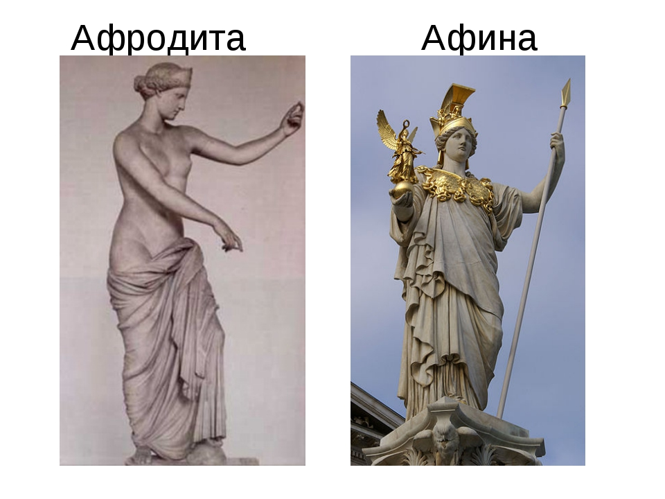 athena and aphrodite Ranin karoumi english 12 6th hour athena and aphrodite introduction athena and aphrodite being one of the two most important female.