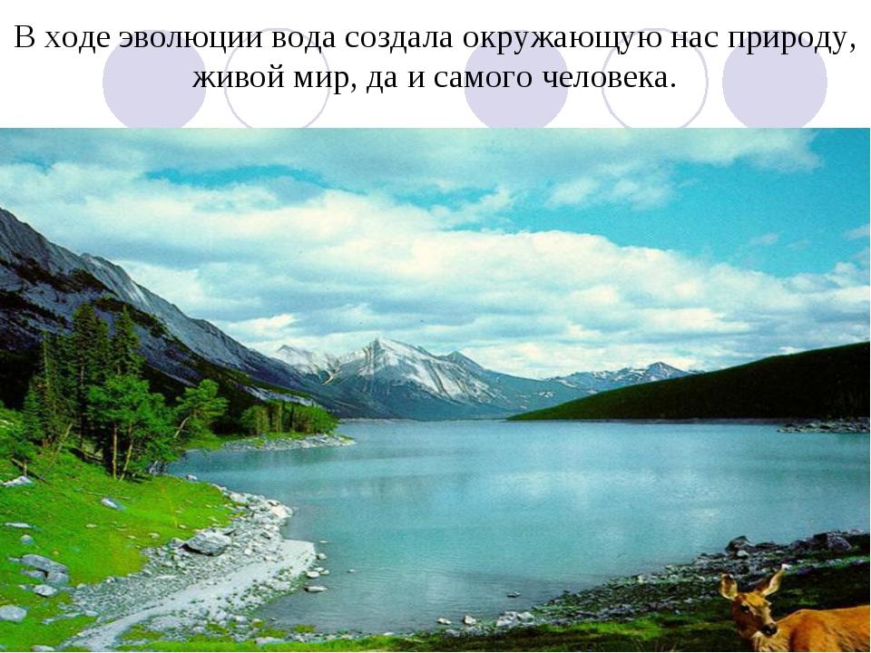 В ходе эволюции вода создала окружающую нас природу, живой мир, да и самого ч...