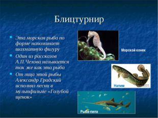 Блицтурнир Эта морская рыба по форме напоминает шахматную фигуру Один из расс