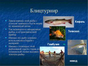 Блицтурнир Ловом именно этой рыбы с успехом занимался Костя моряк из знаменит