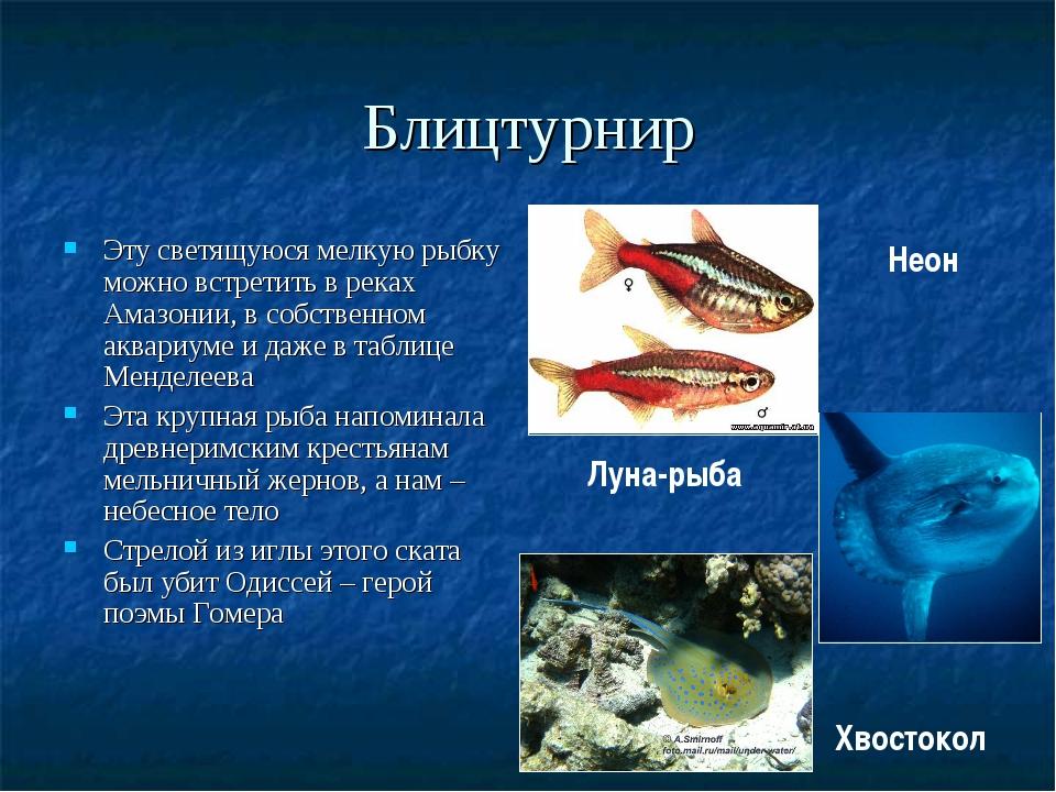 Блицтурнир Эту светящуюся мелкую рыбку можно встретить в реках Амазонии, в со...