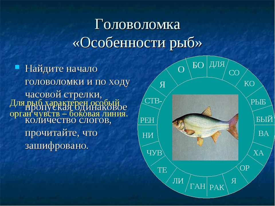 Головоломка «Особенности рыб» Найдите начало головоломки и по ходу часовой ст...